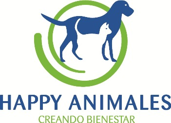 ¿Quieres mejorar la relación con tu perro?. Happy Animales te ayuda